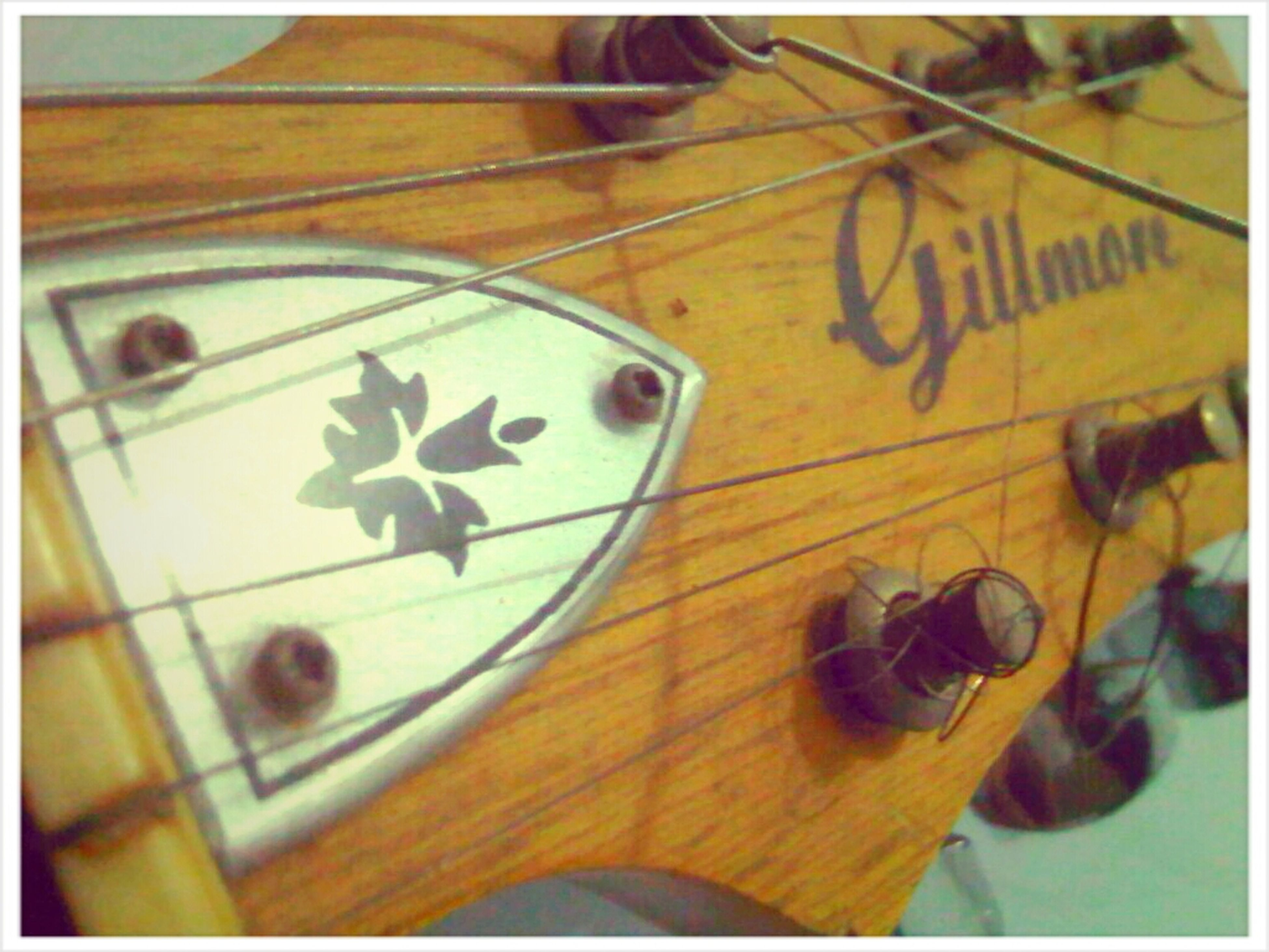 Gillmore Acoustic Guitar