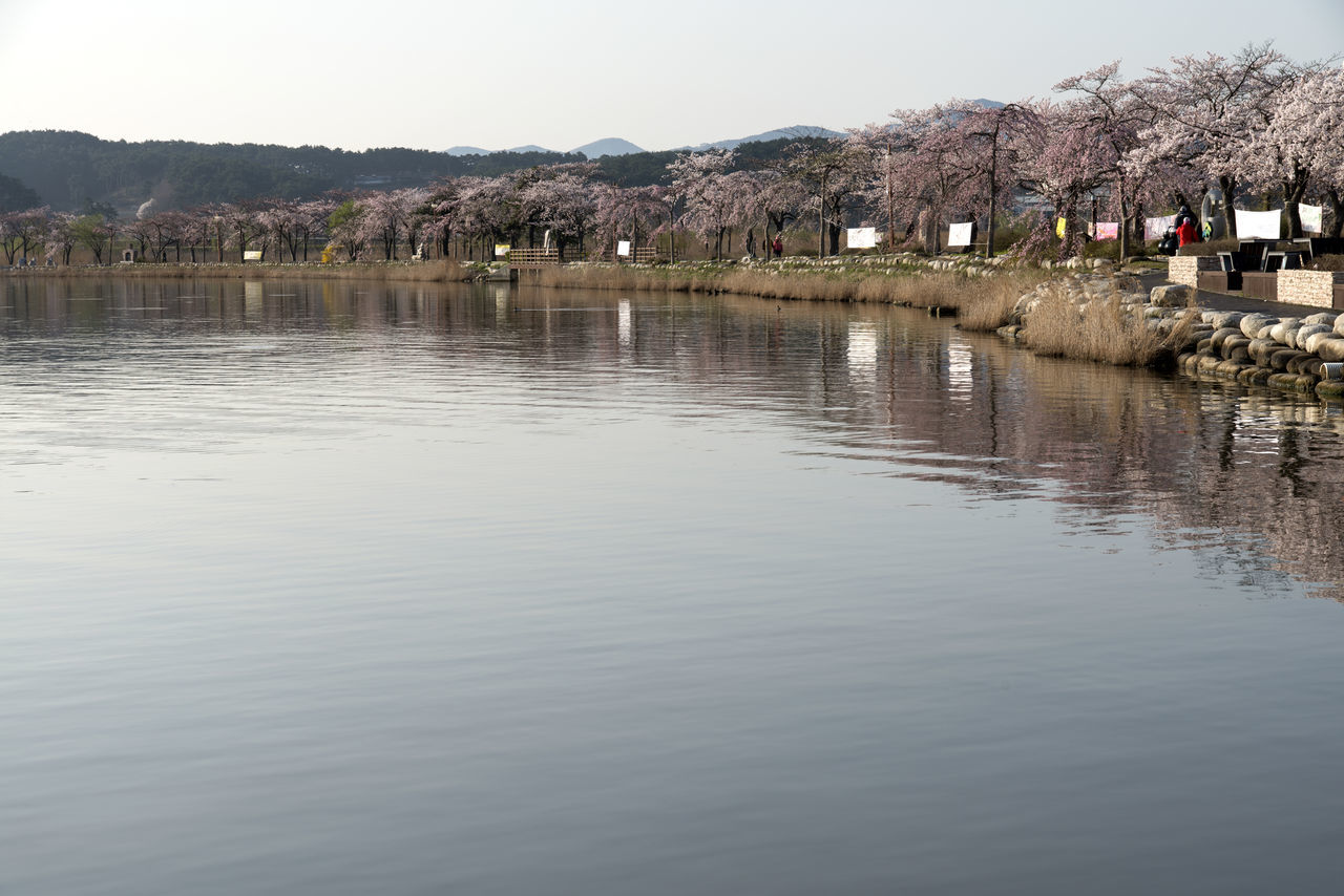 Scenic View Of Gyeongpo Lake During Springtime