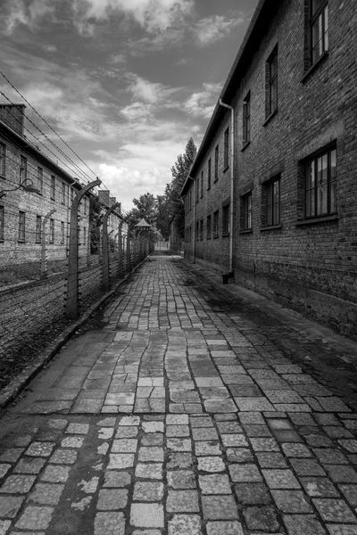Inside Auschwitz Abandoned Buildings Abandoned Places Architecture Auschwitz  Building Exterior Built Structure Day No People Outdoors Sky The Way Forward World War 2 World War 2 Memorial