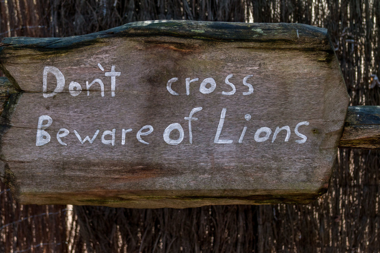 Beware Beware Of Dog BewareOfDog Communication Day Lion Lions No People Outdoors Sign Signs Text Warning Warning Sign Western Script