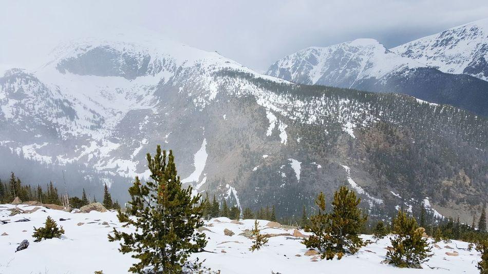 Snow ❄ incoming storm and alpine Landscape along Trailridgeroad in Rockymountainnationalpark