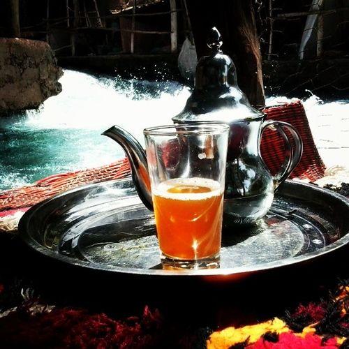 Moroccan tea from Oumrbii River Sources Azrou Morocco Oujda Igoujda Maroc Tea Spring Nature Lifestyle