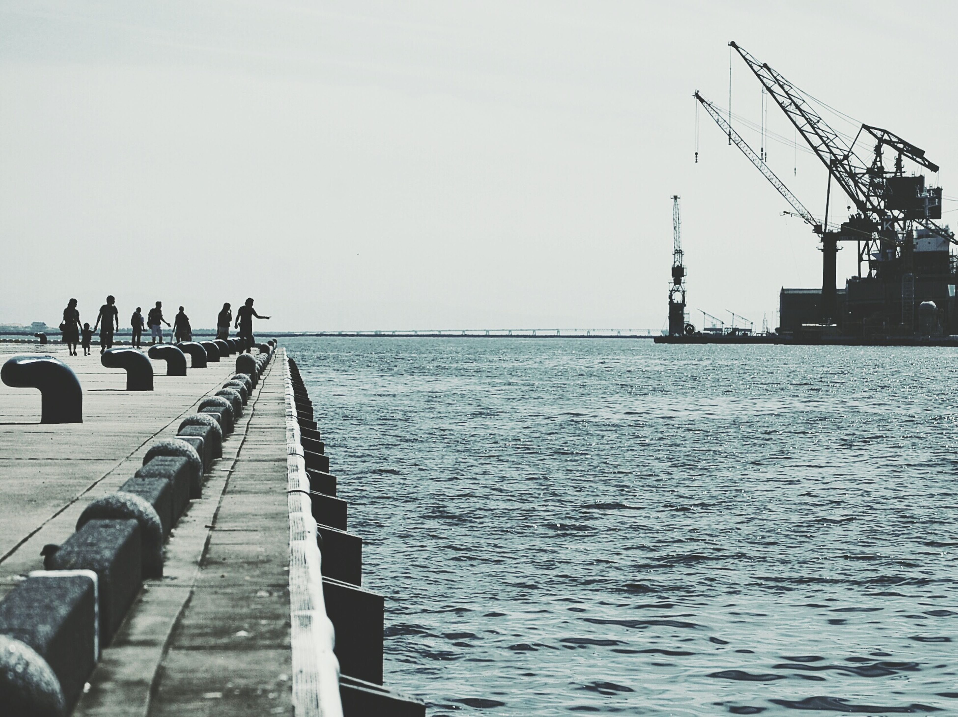 water, sea, clear sky, built structure, pier, copy space, architecture, crane - construction machinery, harbor, sky, transportation, nautical vessel, commercial dock, waterfront, outdoors, nature, day, bird, incidental people, building exterior