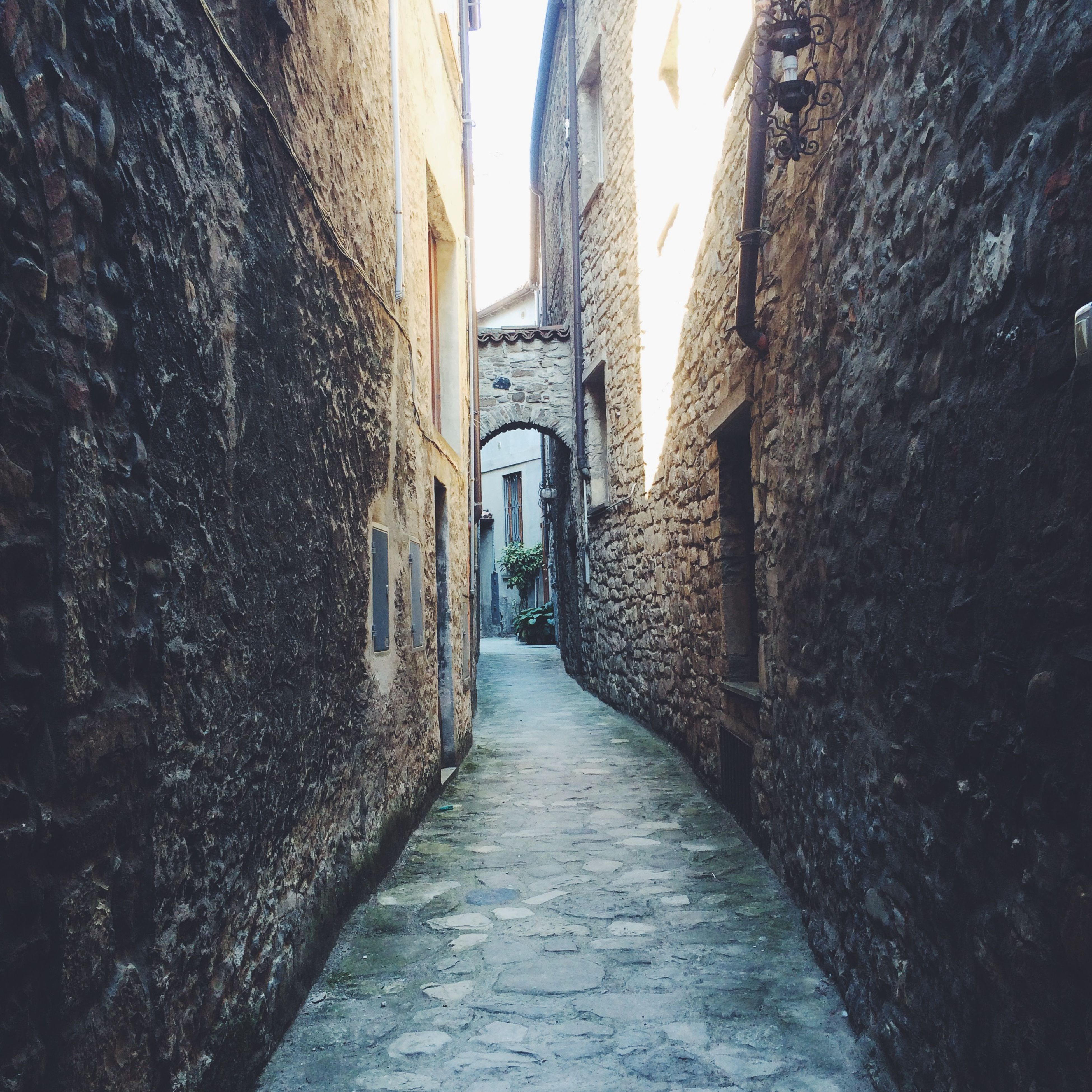 Alley amidst houses in town