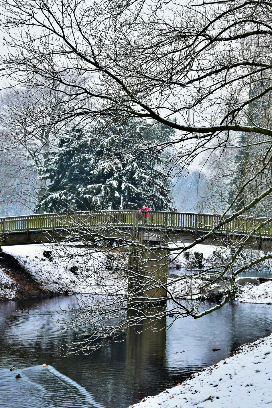 Architecture Beauty In Nature Brücke Built Structure Covered Bridge Einsam Germany Girl Girl In Red Ice Kid Mädchen Outdoors Reflection Rote Kleidung Schnee Snow Stille Tranquility Verträumt девочка мост отражение отражение в воде снег EyeEmNewHere