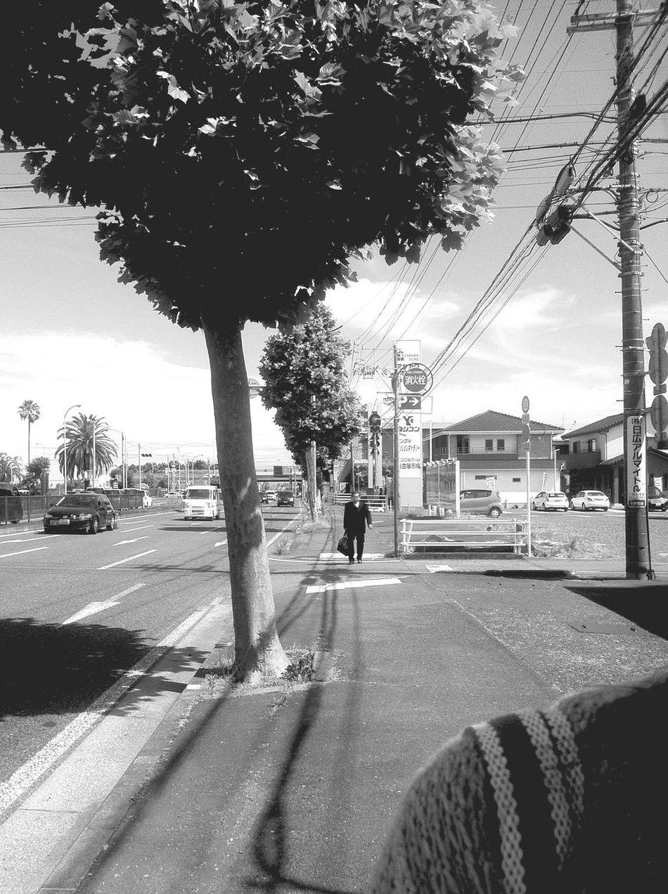 Kurosawa shot Kurosawa Japan Cinematography Stifanibrothers