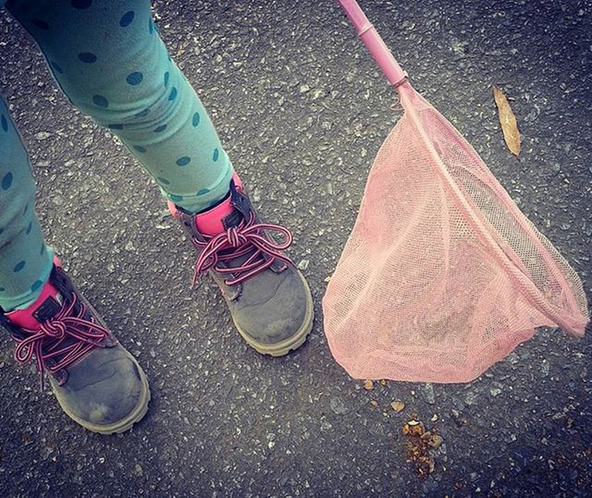 DirtyBoots and ButterflyNets ... ItsFallYall LilosWorld