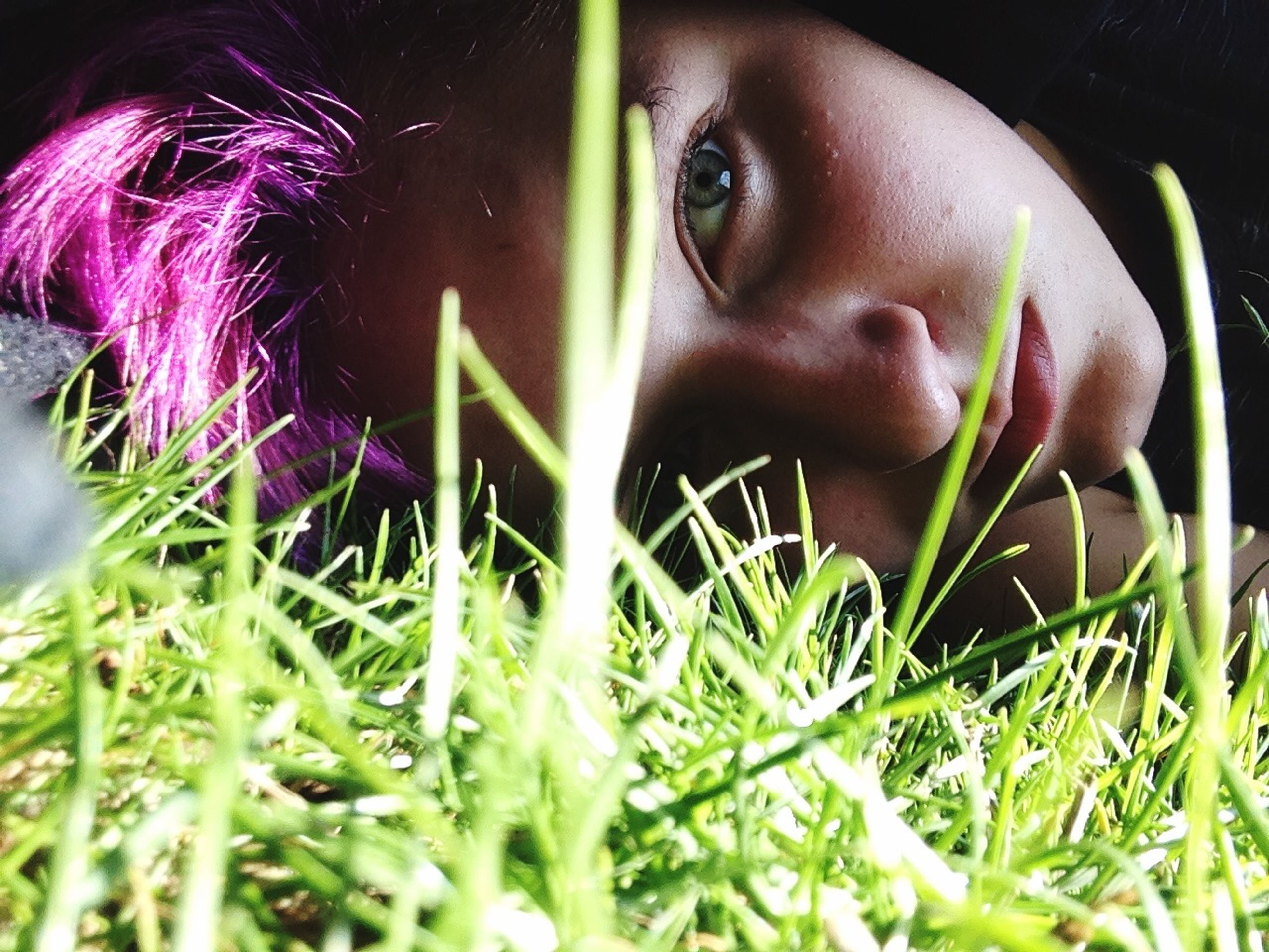 grass, person, lifestyles, young adult, close-up, plant, portrait, focus on foreground, leisure activity, young women, growth, selective focus, looking at camera, field, green color, headshot, front view, flower