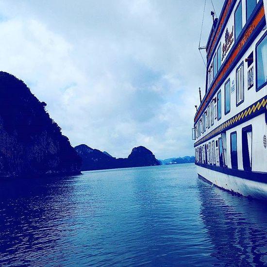 Sailing Ig_artistry Ig_sailing Ig_incredible_shot Ig_inspiration Ig_boatlife Ig_boating Sealife Peace Inspiration Tranquility Ig_transformations Naturelovers Nature_lovers Navegando Navega Barco Barcos Ig_vietnamese Ig_boating