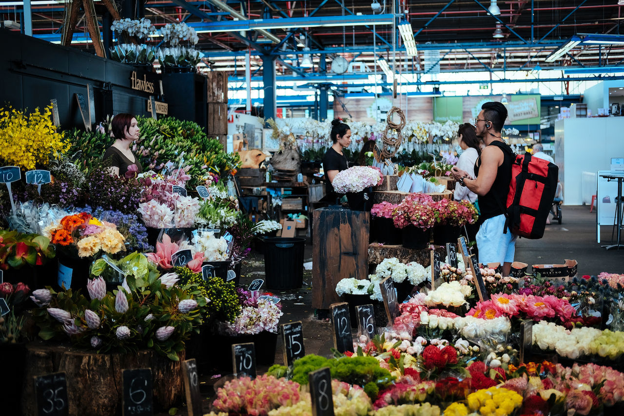 A flower shop at Prahran Market, Melbourne. Adult Adults Only Business Business Finance And Industry Day Florist Flower Flower Market Flower Shop Freshness Indoors  Occupation People Retail  Small Business Store Variation Women