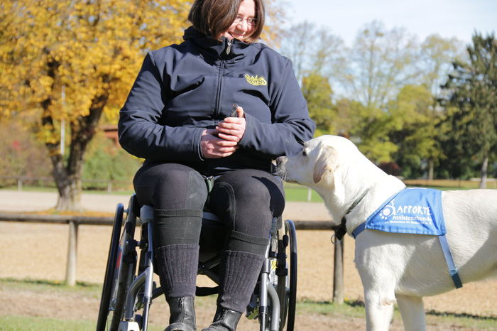 Dog Handicap Help Love Faith Belive
