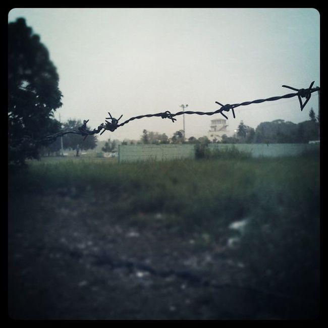 Good Fogy Morning : santiago se levanta con una neblina que cubre la parte de la ciudad Iphonegraph Iphonegraphy