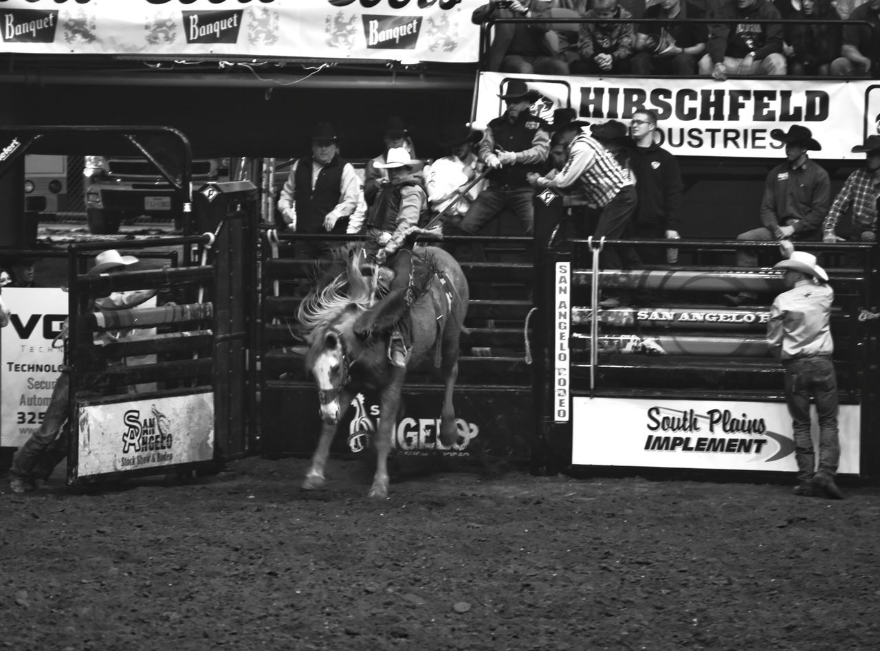 Bull Riding/rodeo Eyeemphotography EyeEm Gallery San Angelo Texas Black & White Photography Rodeo Texas Photographer This Week On Eyeem Rodeotime Horseback Riding Black And White Collection!