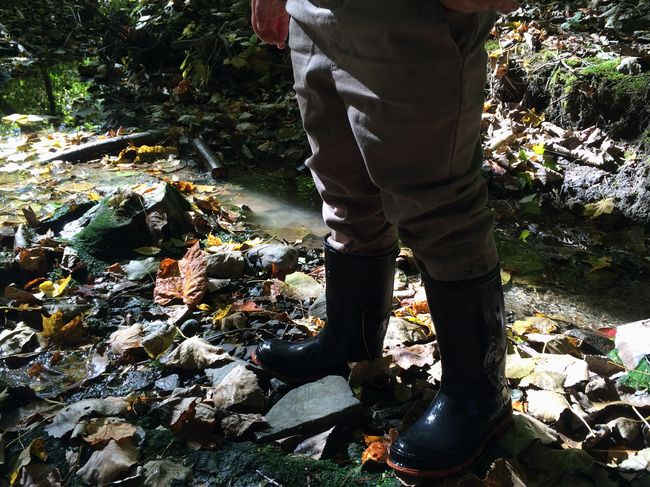Casual Clothing Day Escapism Forest Leaf Low Section Messy Mud Nature Non-urban Scene Outdoors Person Rock Rubber Boots Splashing Standing Stream Tranquility Unschooling Water Wild Wildlife