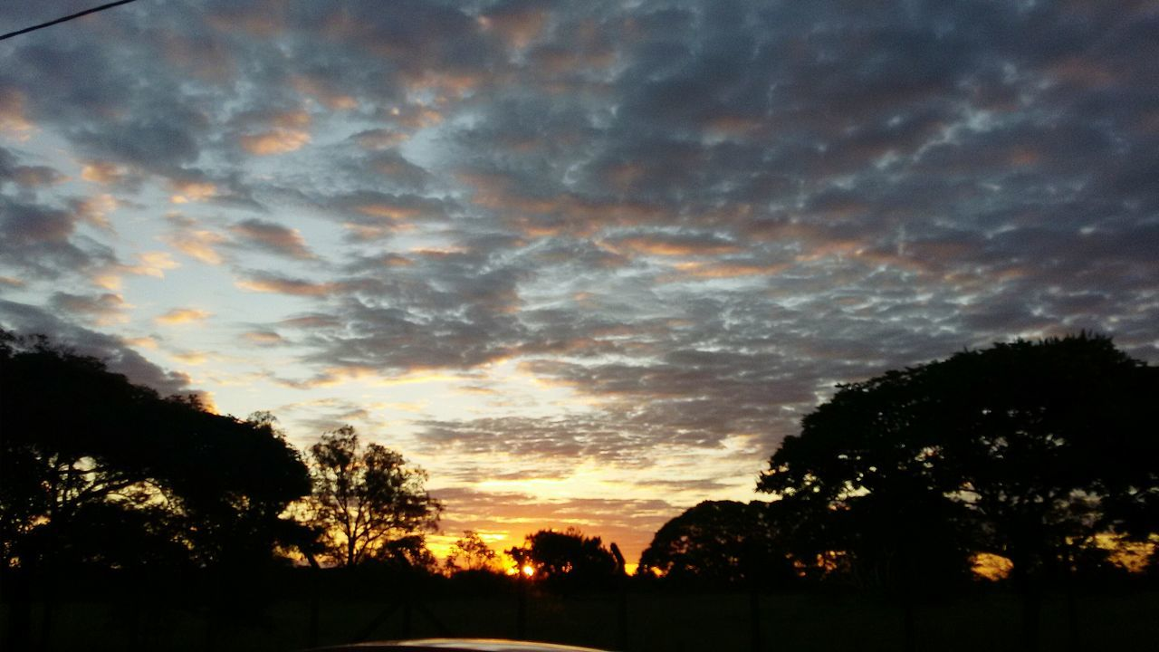 silhouette, tree, sunset, nature, beauty in nature, scenics, tranquil scene, sky, no people, tranquility, cloud - sky, outdoors, day