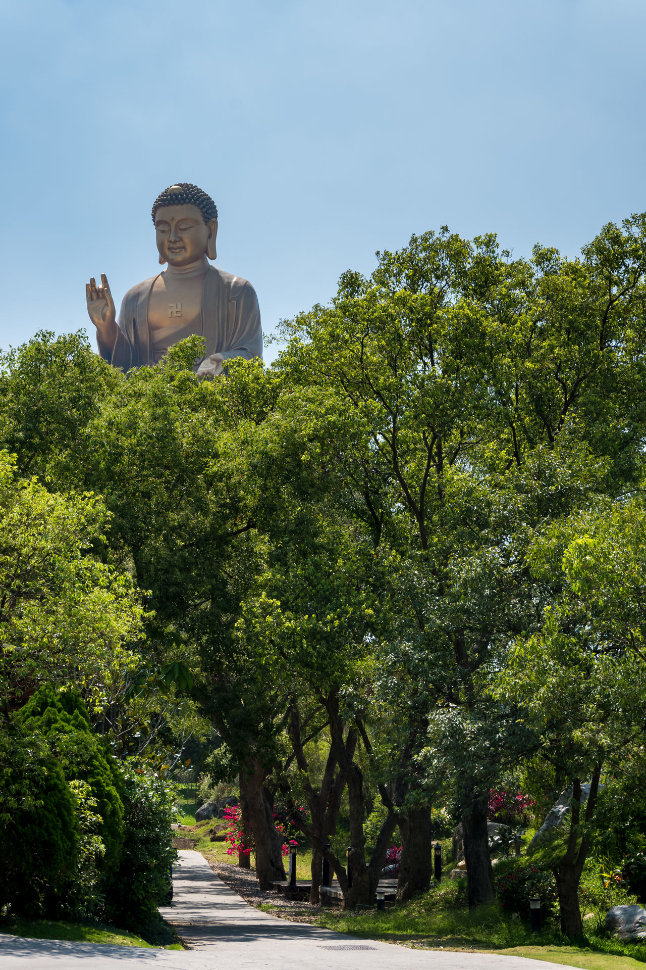 Big Buddha above trees and pathway at the Fo Guang Shan Monastery in Kaohsiung, Taiwan. BIG Big Buddha Buddha Buddhism Buddhist Chinese Culture Day Fo Guang Shan Huge Large Meditation Monastery Monk  Nature Outdoors Path Sky Spirituality Statue Taiwan Temple Tradition Tree Zen