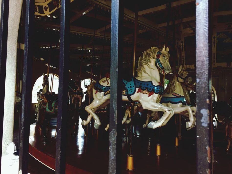 Merrygoround behind bars. Merrygoround Creepy Horror Haunted Pretty Urban Scary California San Diego Horses 不気味 メリーゴーランド 馬 カリフォルニア 檻 怖い