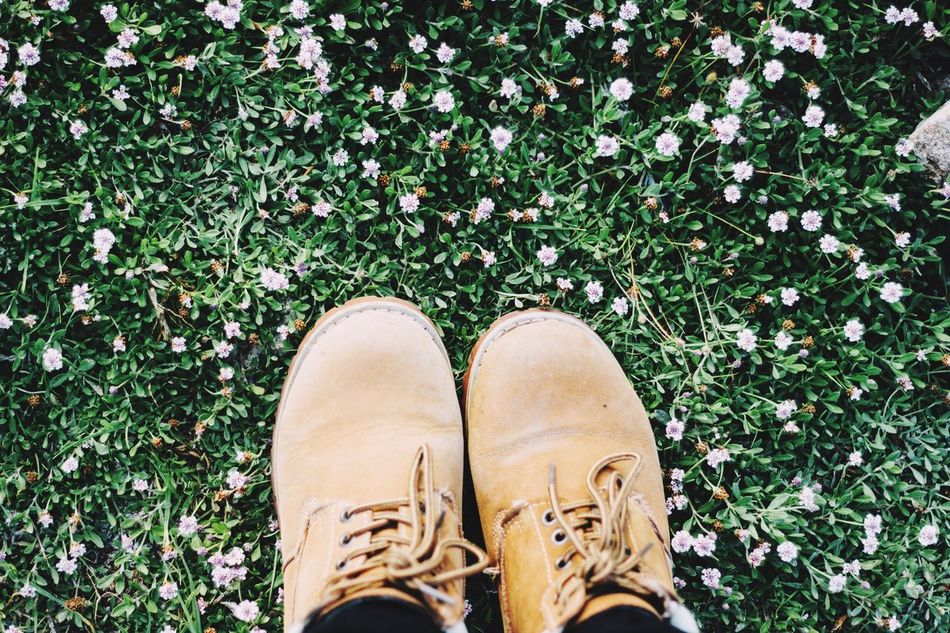 Forest Photography Photography Themes Chile♥ Shoe Human Leg One Person Personal Perspective Green Color Photographing Chilena LaSerena Nature Grass