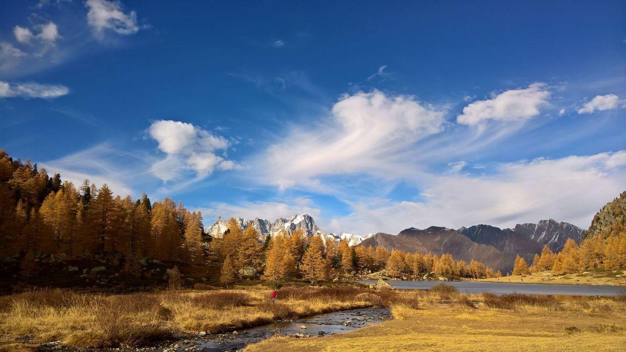 Tree Landscape Mountain Lake Arpy Alps Italy Aosta Valledaosta Nofilter Nature Wild Amazing