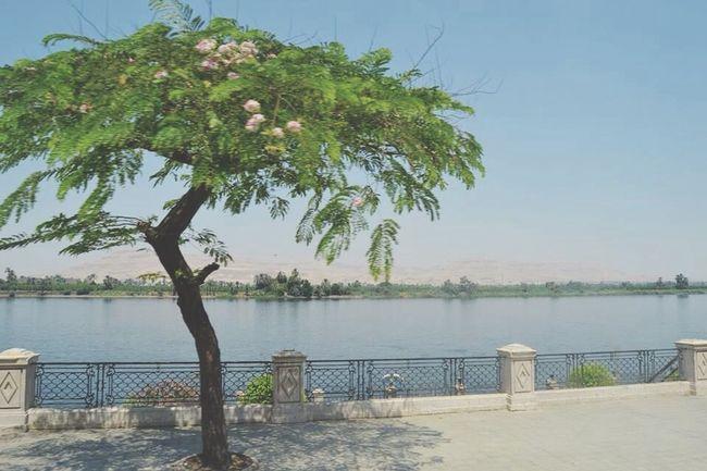 Nilo Egypt Sun ☀ Holiday