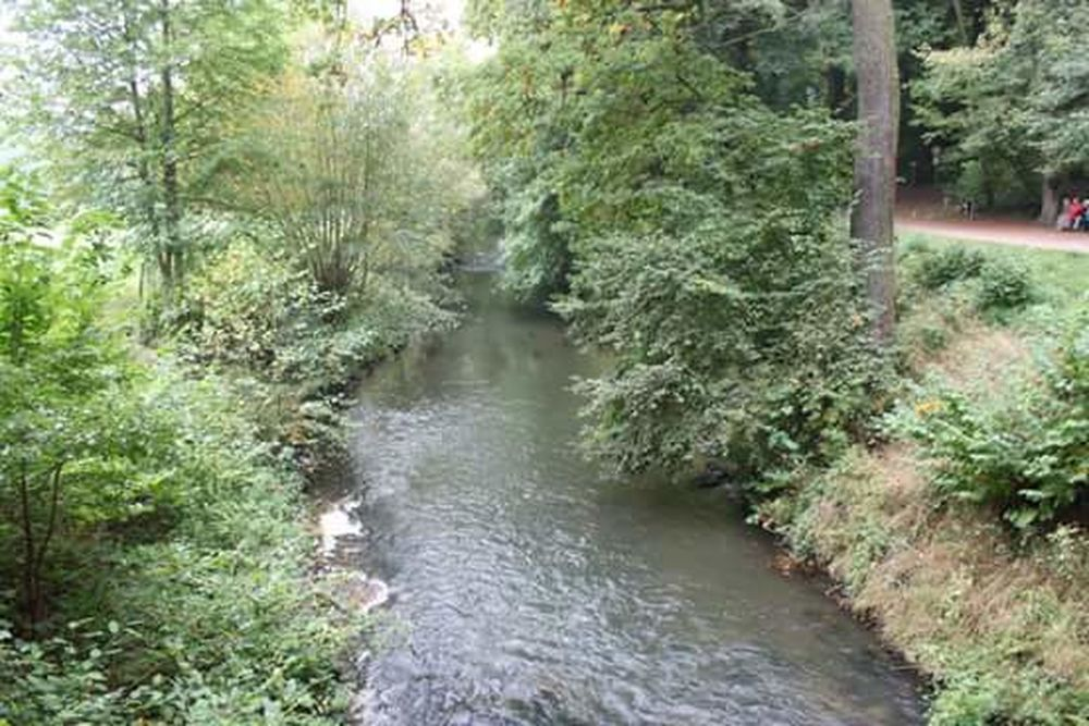 River The Geul At The Three Statues In Valkenburg Taking Photos Geul In Het Bos At The Woods BOS Rivier Water Walking Around Taking Pictures Beauty In Nature Valkenburg Canon EOS 1300D Walking Around Fresh On Eyeem  Zuid Limburgs Landschap