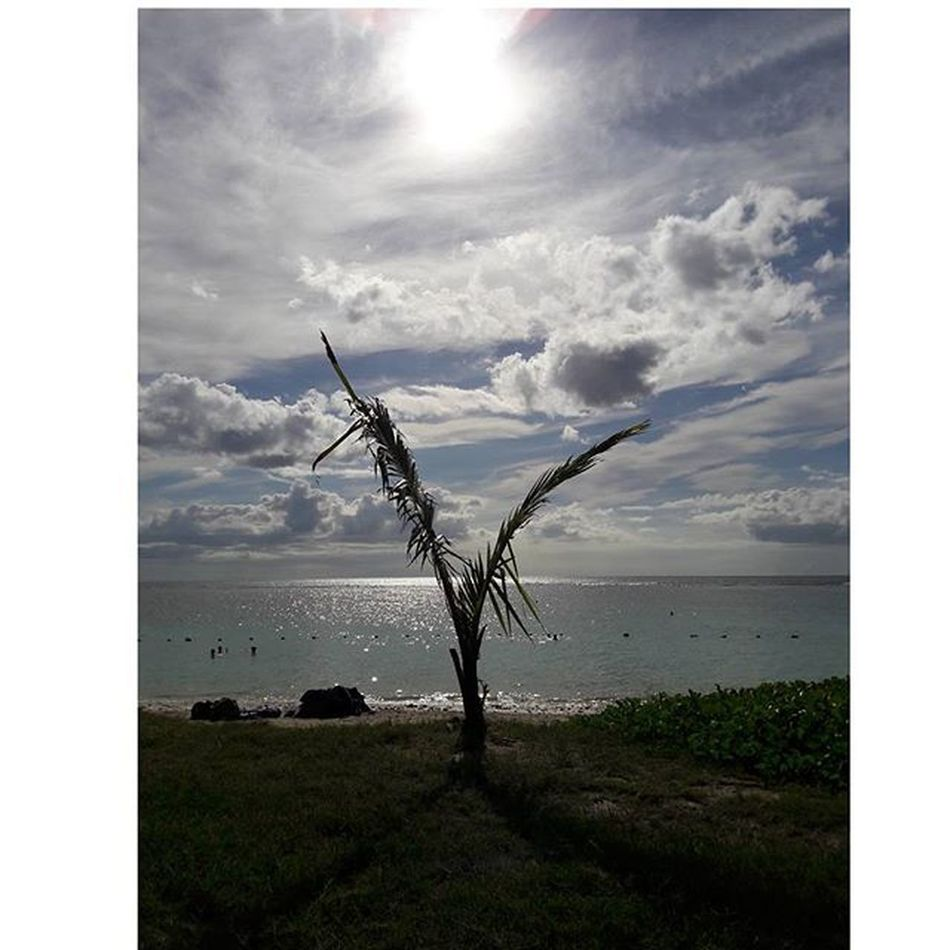-It was a good day Instamood Instapic Sea Beach Cousins  Summer Igersmauritius Wolmar