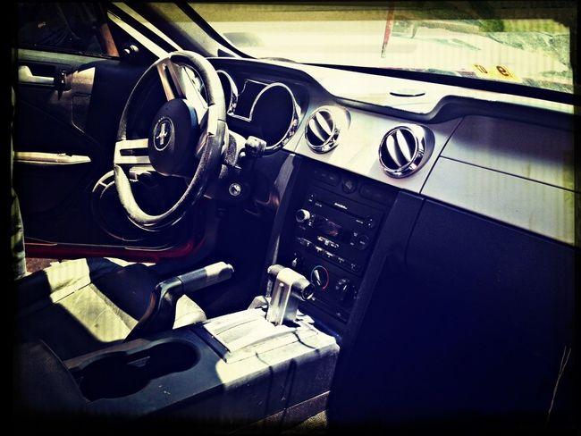 My Cars Interior .