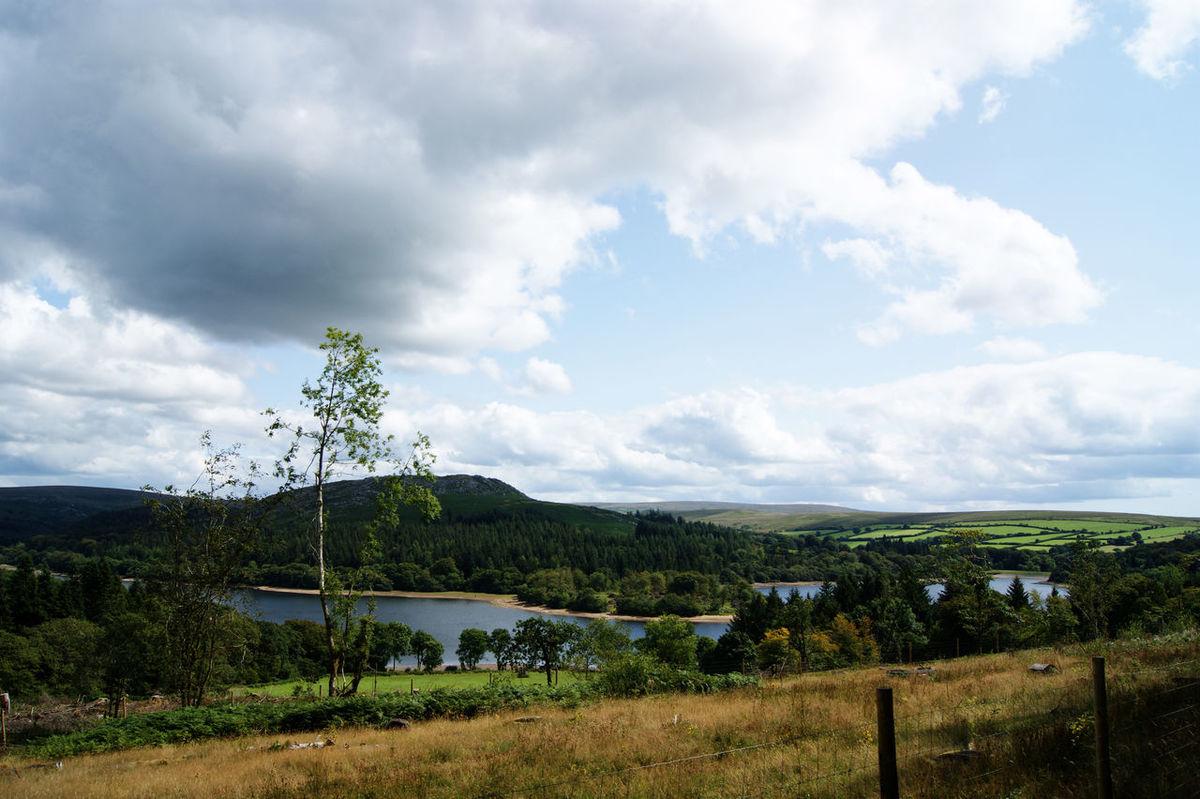 View over burrator reservoir Beauty In Nature Burrator Reservoir Dartmoor England Lake Landscape Nature Water