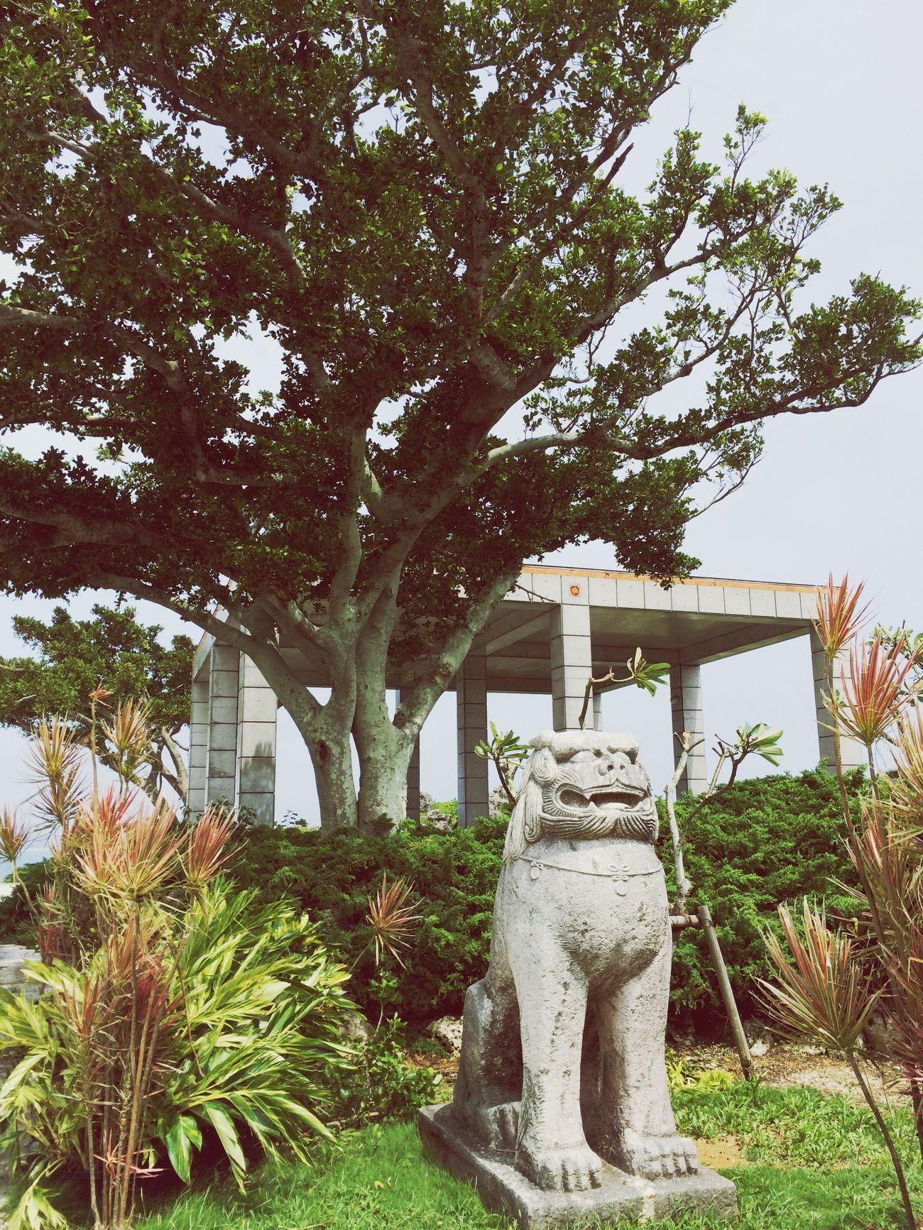 Okinawa シーサー Vacation