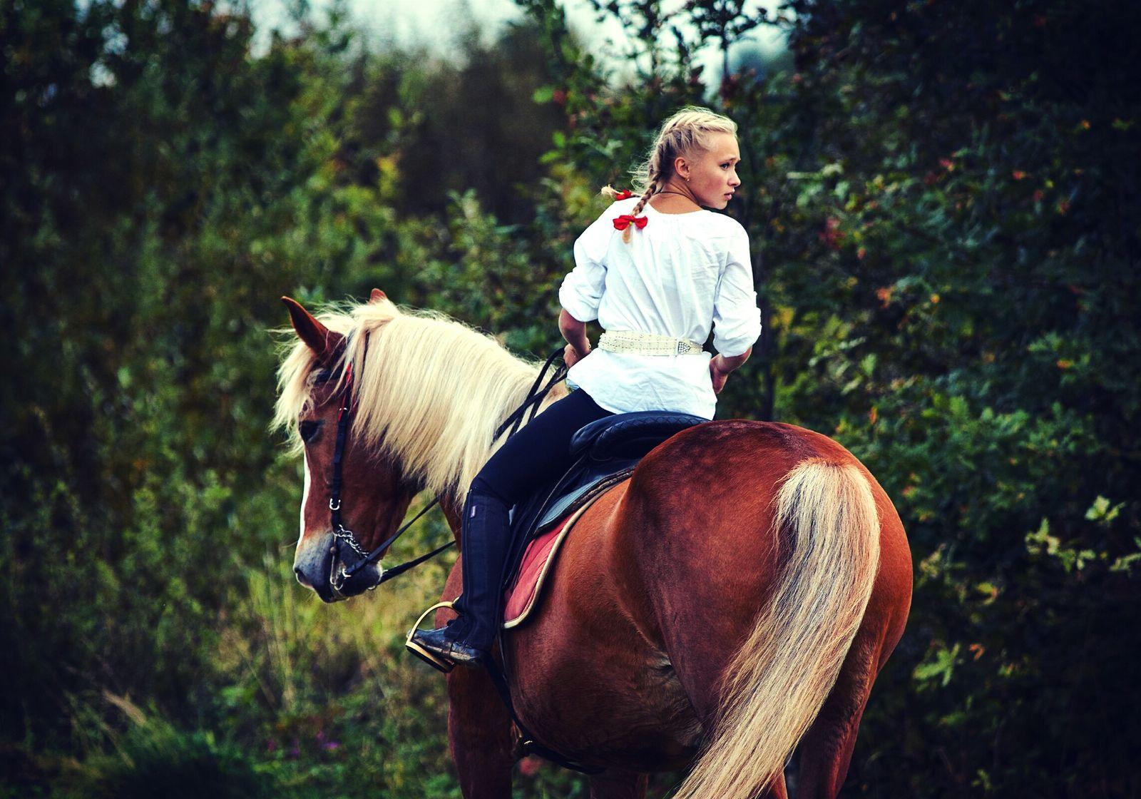 Horse Velikiy Novgorod Витославлицы Sammer2016 Kazachka Horse Life Horse <3 Horse Photography  Horselove Beauty In Nature People Day One Person Nature