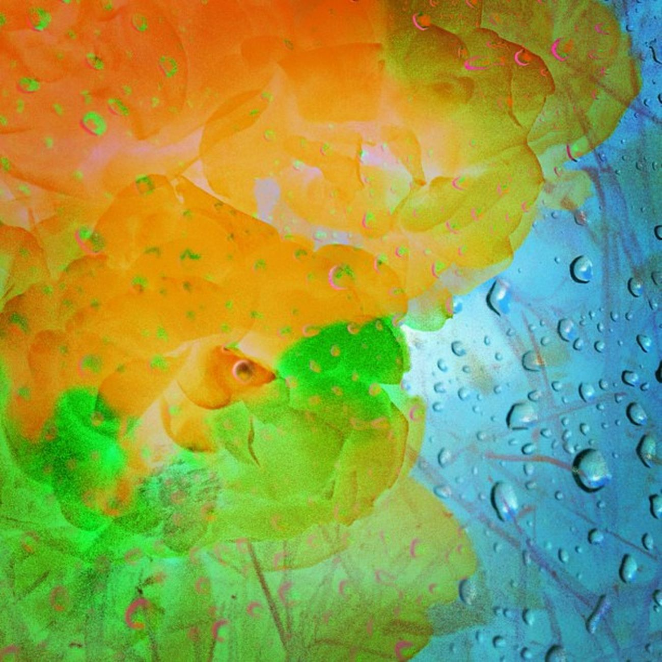 The Discovery of Rain Instaabstract Ig_captures Edit Happycolortrip Abstracto Coloronroids All_shots Dhexpose StayABSTRACT Ace_ Abstractart Deadlydivas Gang_family Ig_one Editjunky Icatching Mobileartistry Femme_elite Instauno Weareinheaven Igsg You_nique_edits Bd Mi55flowerz Abstracters_anonymous Abstract_buff Abstractobsession