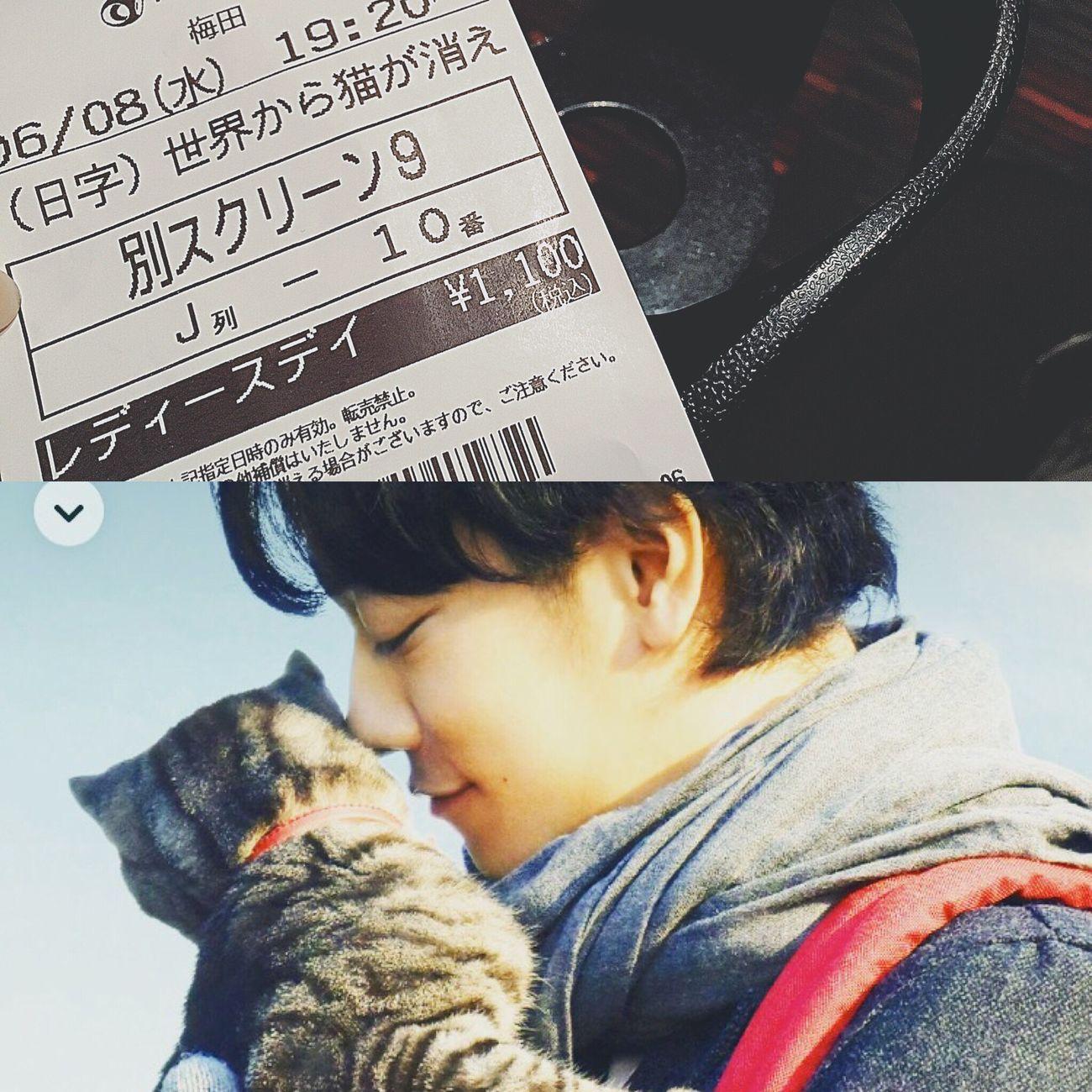 こっちは劇場で(*^_^*) 世界から猫が消えたなら MOVIE