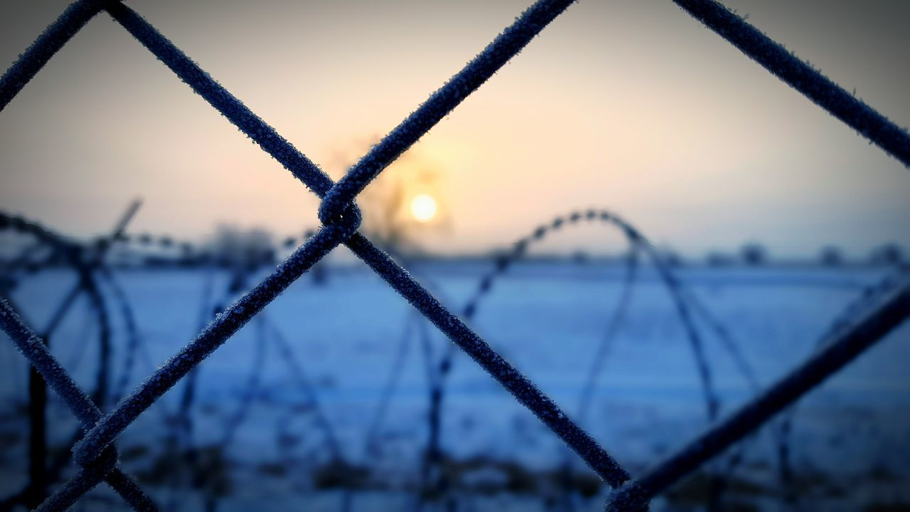 Security Fence Barbed Wire Wirefence Protection Safety Chainlink Fence Separation Close-up Sky Focus On Foreground Safe Sunrise Wire Mesh Cold Temperature Outdoors Sun Tree Snow Extreme Weather Freezing Cold Border Hungary Serbia Migration