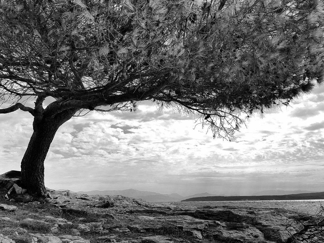 šolta Croatia Landscape Seaside Seascape Summer Black And White 43 Golden Moments