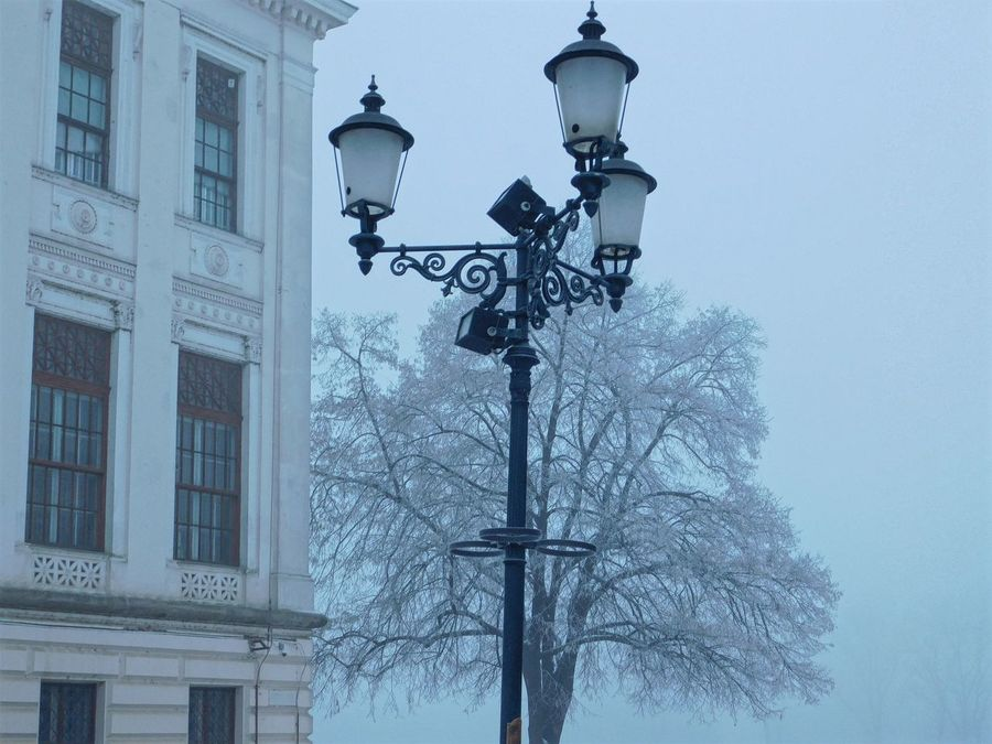 Building And Nature Foggy Days  Frosty Days It Is Cold Outside Wintertime