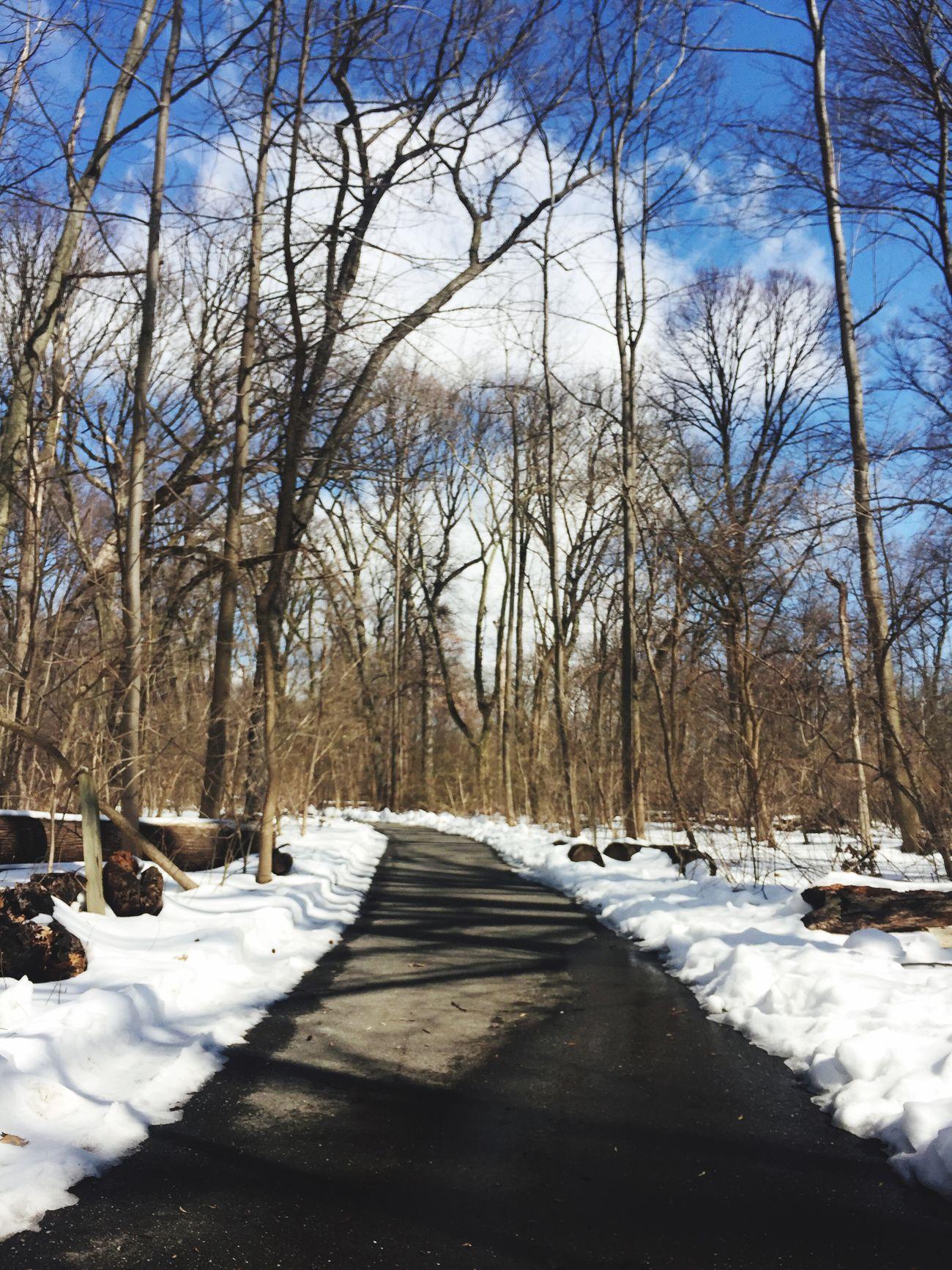 Snow White Prospect Park
