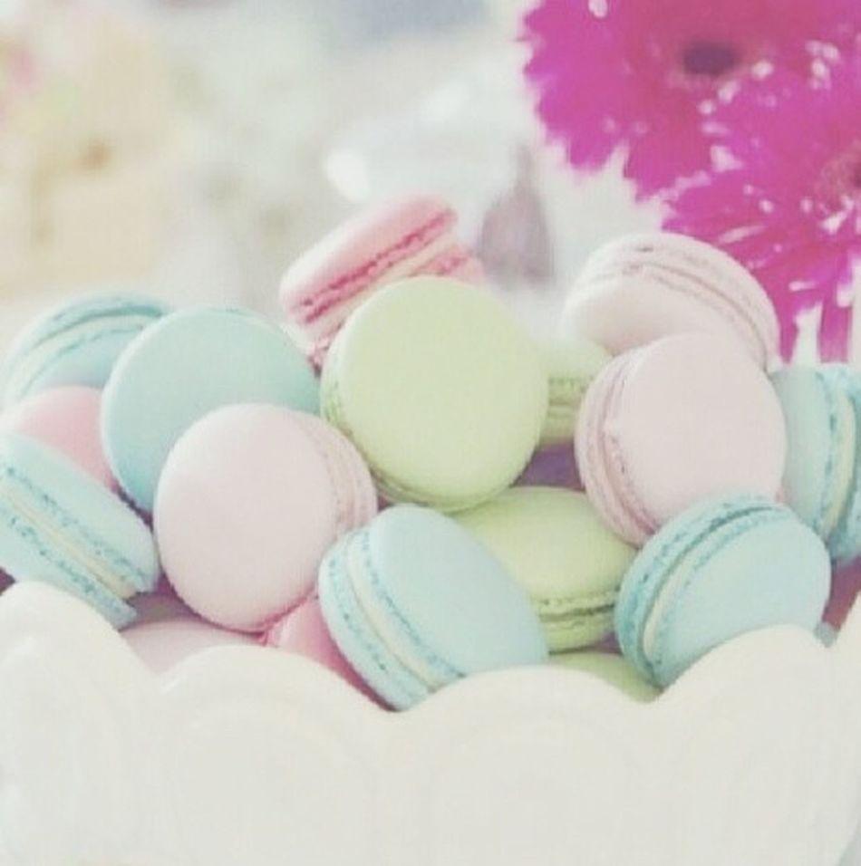 Macarons Enjoying Life Love Art