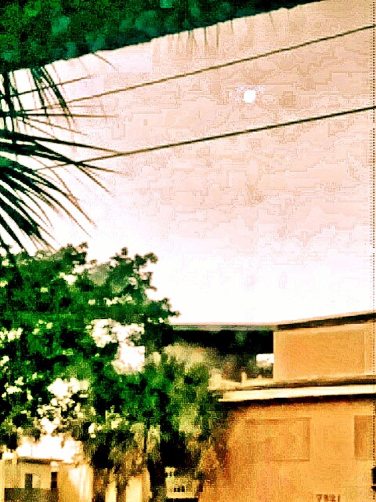 Good Morning The Moon Moon And Sun Moon At Sunrise Moonporn