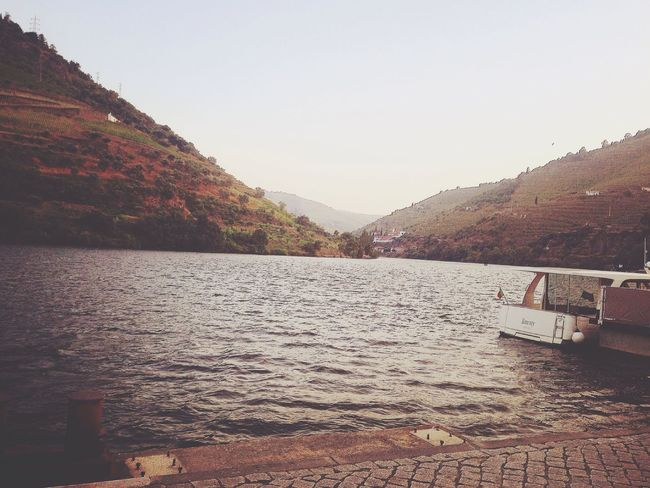 Douro  Afrernoon Golden Colors Best Place Check This Out Relaxing Nature