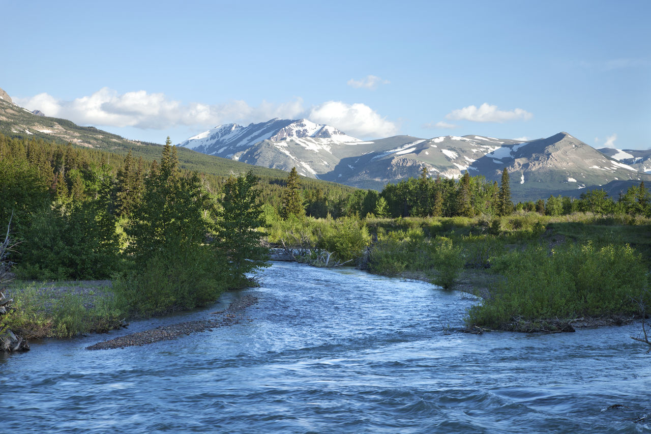 The Two Medicine River below mountains near Glacier National Park in morning light Beauty In Nature Color Image Landscape Light Montana Morning Mountain Nature No People Photography River Scenics Snow Snow-capped Sunlight Two Medicine USA Water West Wilderness