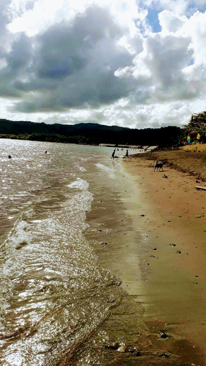 water, nature, sky, day, beach, cloud - sky, sand, outdoors, domestic animals, tree, real people, beauty in nature, mammal, scenics, men, one person, people