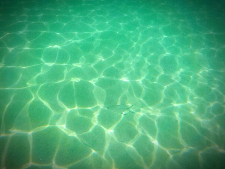 Vacations Photograph Water Sea Summer Travel Destinations Outdoors Tropical Climate Tranquil Scene No People Refraction Abstract Close-up Nature Full Frame Rippled Purity Backgrounds Layanbeach Phuket,Thailand Thailand Love Fish Fish In The Sea