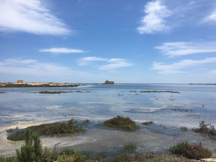 Portugal Water Beach Lost Places Sea Architecture