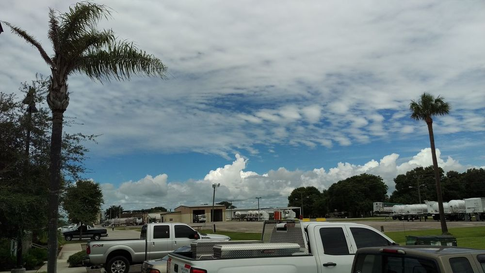 Cloud Cloud - Sky Cloudy Day Growth Land Vehicle Mode Of Transport Nature No People Outdoors Palm Tree Parking Parking Lot Road Sky Stationary Transportation Tree Weather
