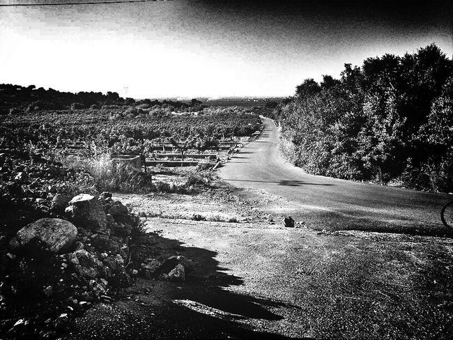 Blackandwhite Landscape Looking Forward Countryside