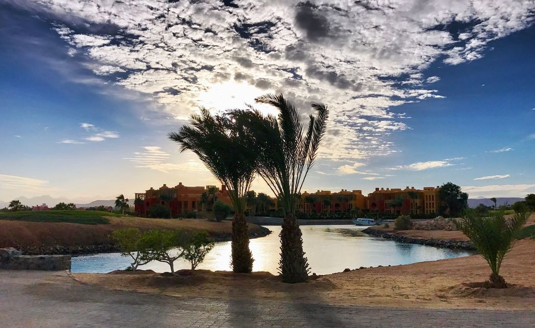El-Gouna El-Guna El Guna El Gouna Steigenberger Hotel Steigenberger My Year My View Ägypten  Egypt Red Sea Rotes Meer © MJ ® Water Sky Reflection Palm Tree Nature Lake Outdoors Cloud - Sky Scenics No People Beauty In Nature Tadaa Community Tadaa Tadaa Friends