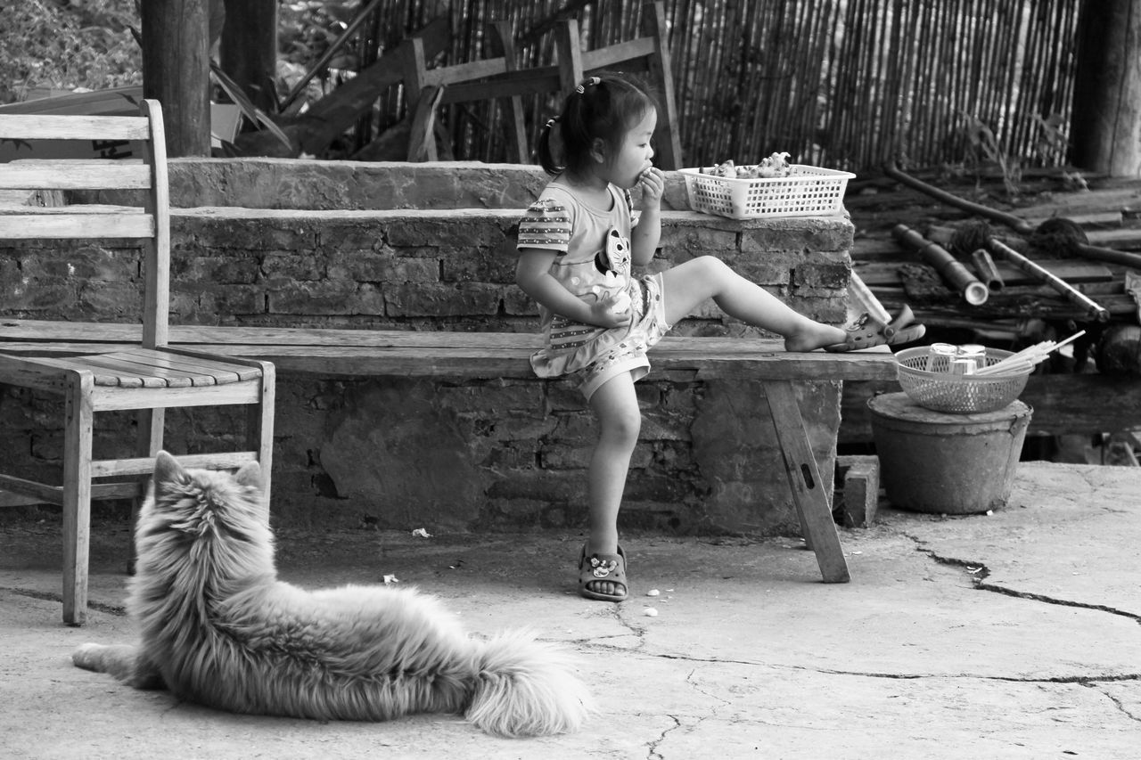 one animal, animal themes, real people, pets, outdoors, day, domestic animals, one person, full length, mammal, lifestyles, playing, young women, young adult, sitting, nature, people