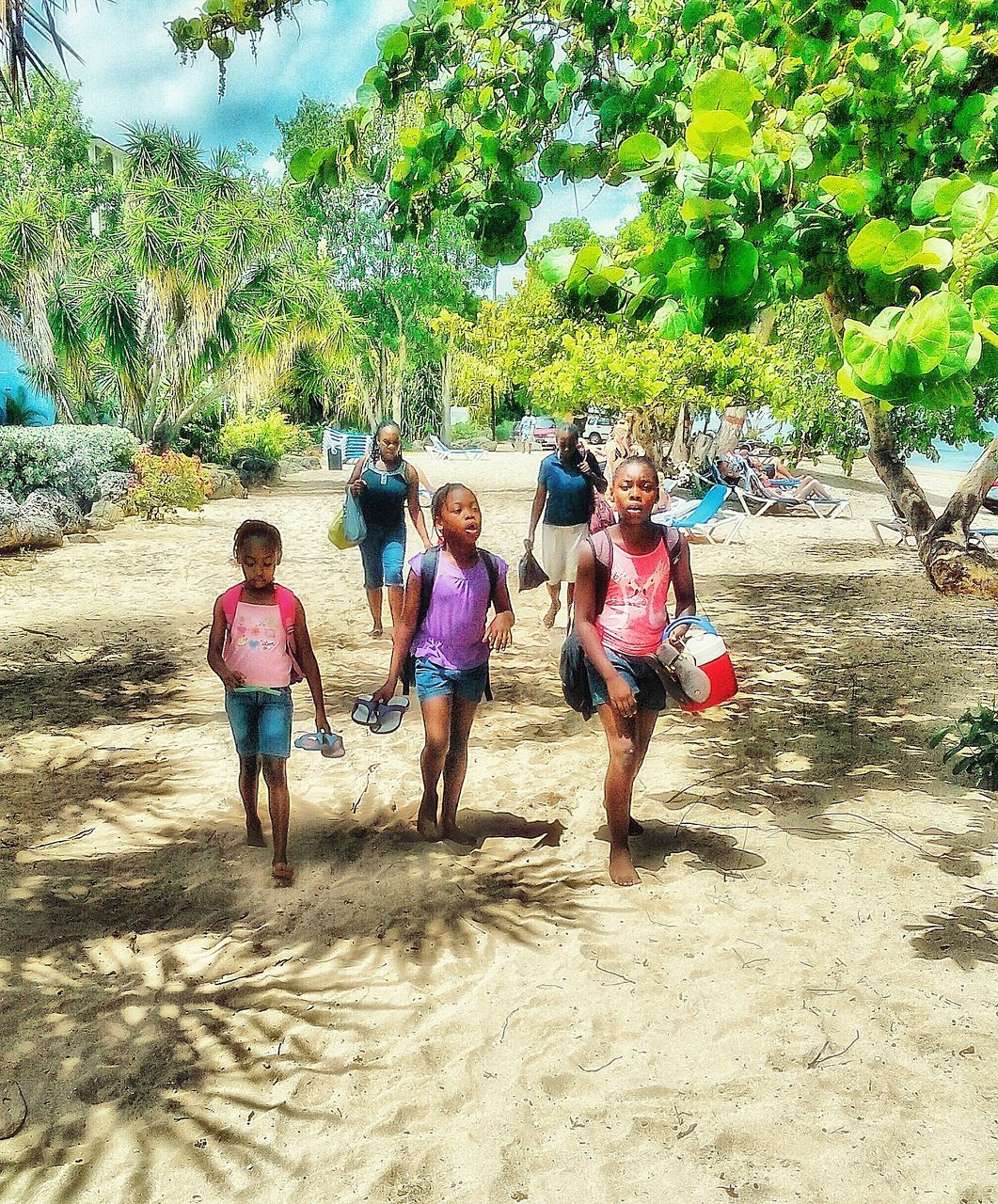 real people, sand, tree, boys, childhood, elementary age, leisure activity, day, girls, full length, fun, lifestyles, outdoors, playing, enjoyment, nature, togetherness, growth, beach, happiness, friendship, beauty in nature, sky, young adult, people