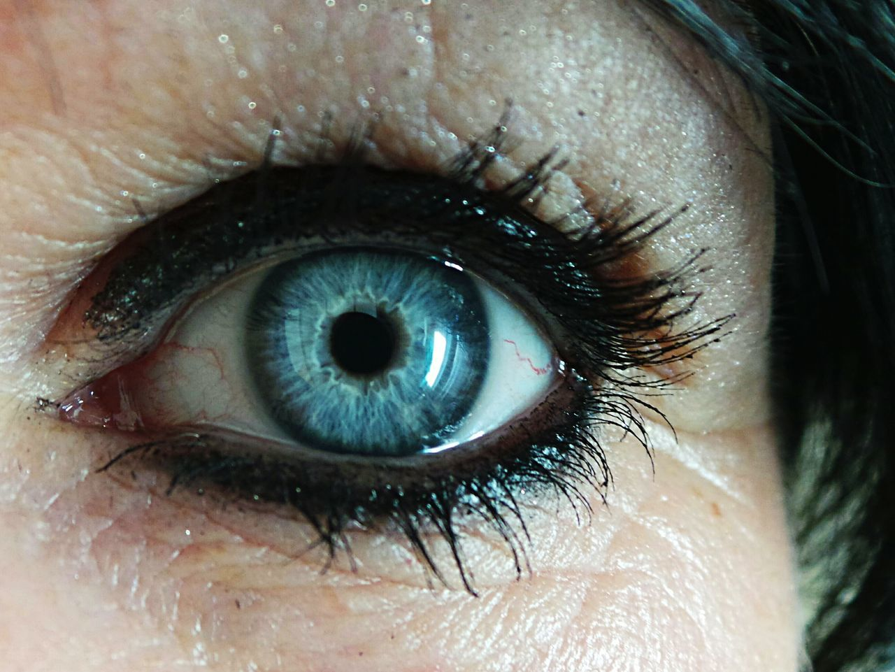 human eye, human body part, eyelash, one person, close-up, macro, eyesight, eyeball, looking at camera, real people, human skin, sensory perception, iris - eye, eyebrow, portrait, outdoors, day, adult, people, adults only