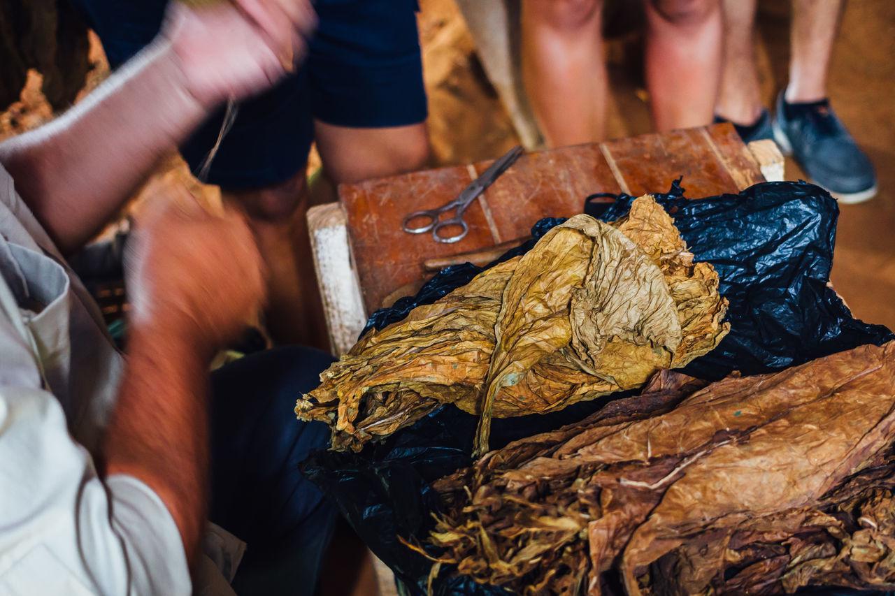 Cigar Cigars Close-up Cuban Cigar Handmade Human Hand Nicotine Real People Scissors Tobacco Tobacco Barn Tobacco Leaf Working Wrapper